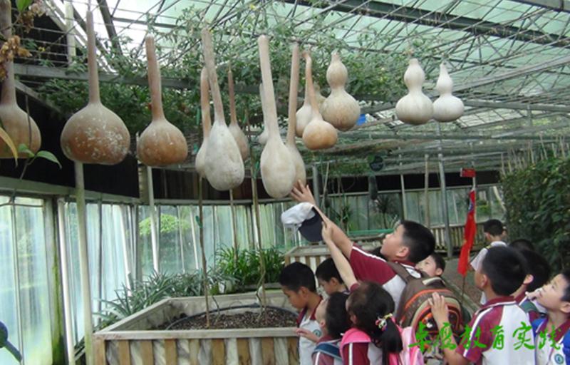 翡翠山湖小学社会实践活动