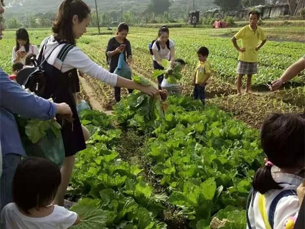 卧龙山花园幼儿园亲子活动